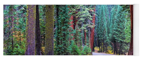 Sequoia Hwy Yoga Mat