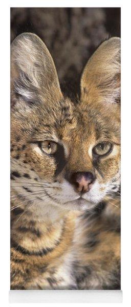 Serval Portrait Wildlife Rescue Yoga Mat