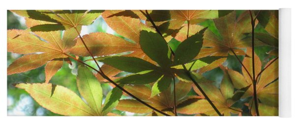 Shadows Of Maple  Yoga Mat