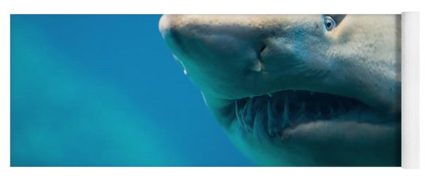 Shark Yoga Mat