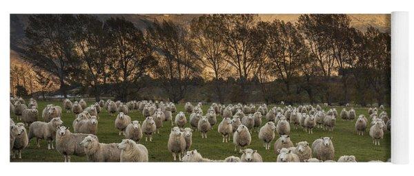 Sheep Flock At Dawn Arrowtown Otago New Yoga Mat