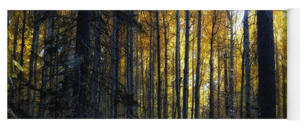 Yoga Mat featuring the photograph Shining Through by Belinda Greb