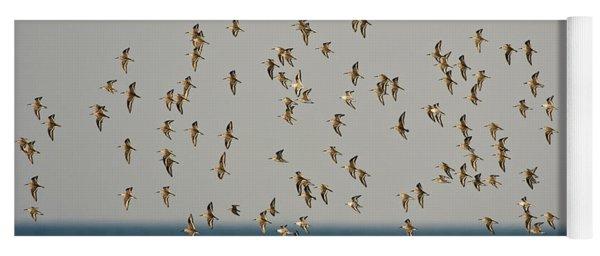 Shorebirds Flying Yoga Mat