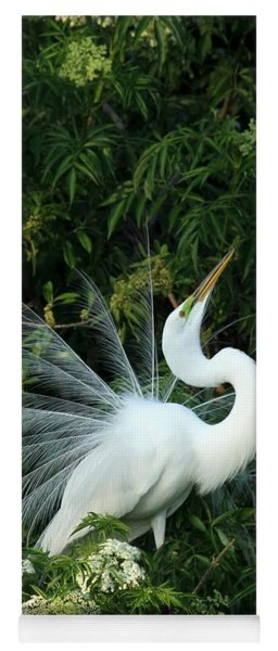 Showy Great White Egret Yoga Mat