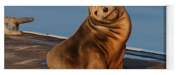Shy Sea Lion Pup  Yoga Mat