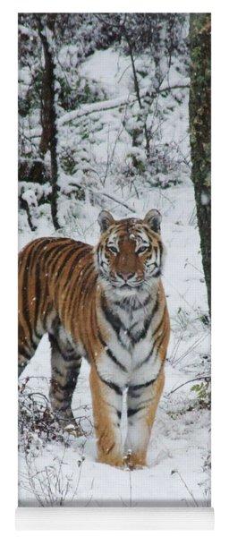 Siberian Tiger - Snow Wood Yoga Mat