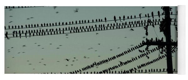 Silhouette Of Birds Gathering On Wires Yoga Mat