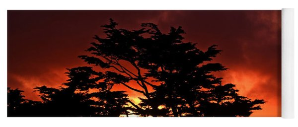 Silhouetted Cypresses Yoga Mat