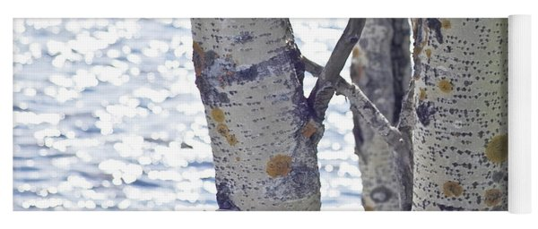 Silver Birch Trees At A Sunny Lake Yoga Mat