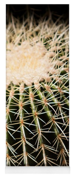 Yoga Mat featuring the photograph Single Cactus Ball by John Wadleigh