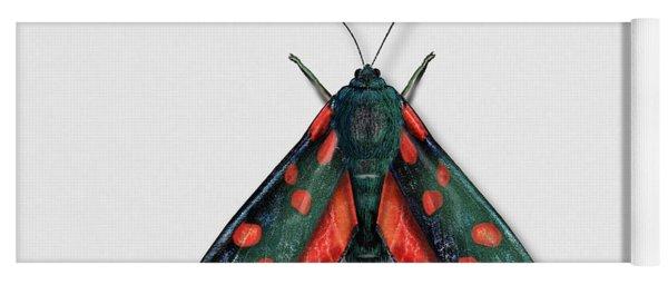 Six Spot Burnet Butterfly - Zygaena Filipendulae Naturalistic Painting - Nettersheim Eifel Yoga Mat