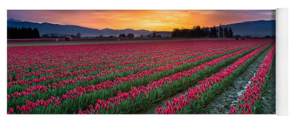 Skagit Valley Predawn Yoga Mat