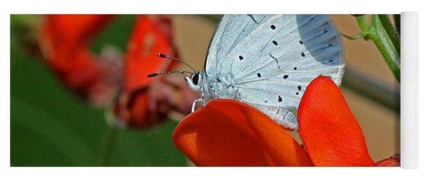 Small Blue Butterfly Yoga Mat
