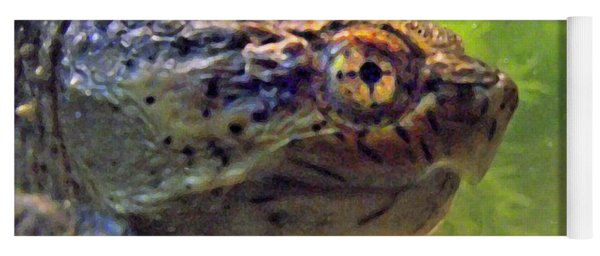 Snapping Turtle Head Upclose Filtered Yoga Mat