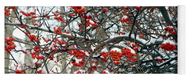 Snow- Capped Mountain Ash Berries Yoga Mat