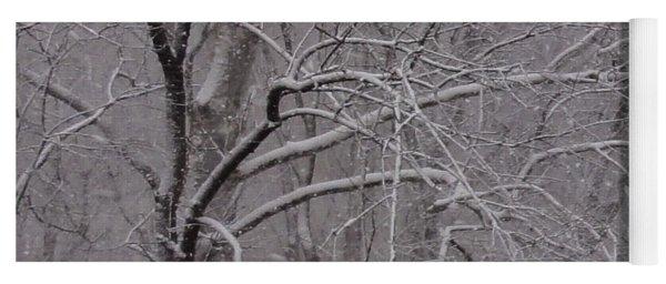 Snow In The Trees At Bulls Island Yoga Mat
