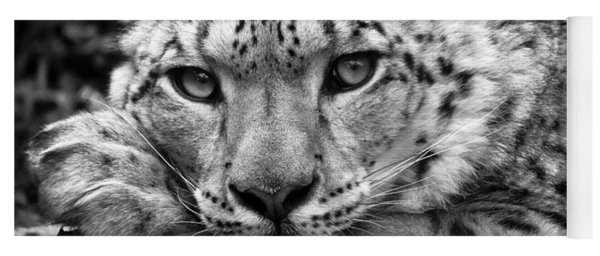 Snow Leopard In Black And White Yoga Mat