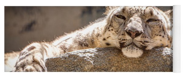 Snow Leopard Relaxing Yoga Mat