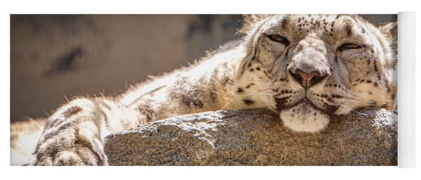 Yoga Mat featuring the photograph Snow Leopard Relaxing by John Wadleigh