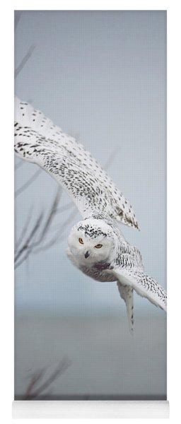 Snowy Owl In Flight Yoga Mat