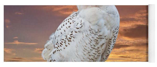 Snowy Owl Perched At Sunset Yoga Mat