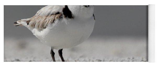 Snowy Plover Yoga Mat