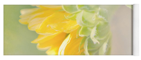 Soft Yellow Sunflower Just Starting To Bloom Yoga Mat