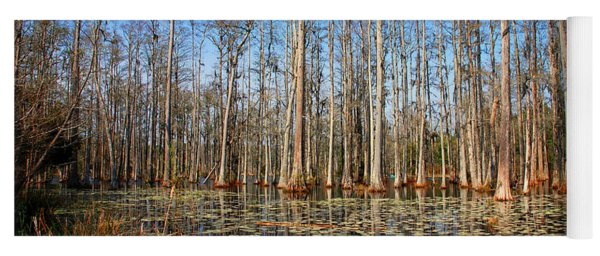 South Carolina Swamps Yoga Mat
