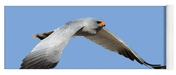 Southern Pale Chanting Goshawk In Flight Yoga Mat