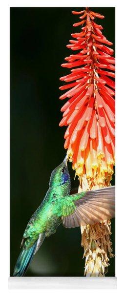 Sparkling Violetear Hummingbird Yoga Mat