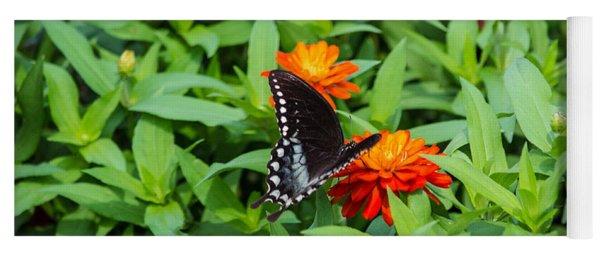 Spicebush Swallowtail Yoga Mat