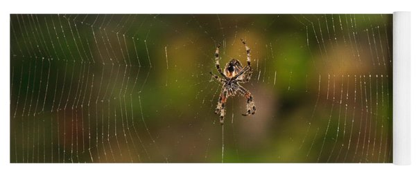 Spider Web Yoga Mat