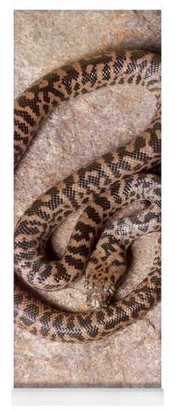 Spotted Python Antaresia Maculosa Top Yoga Mat