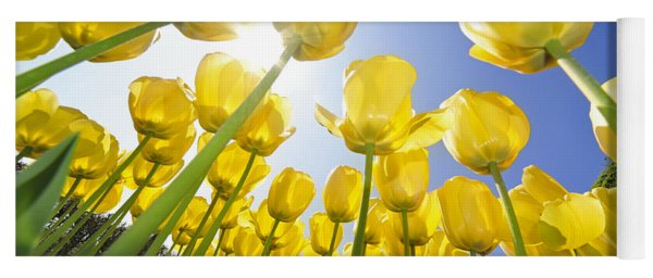 Spring Flowers 5 Yoga Mat