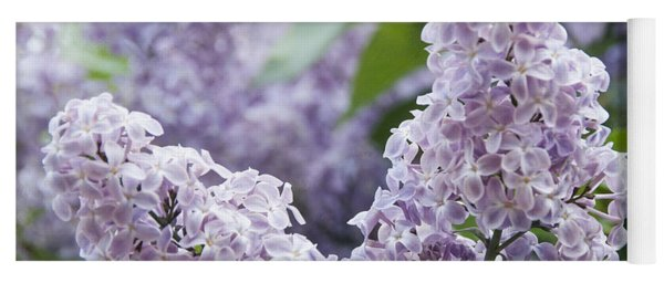 Spring Lilacs In Bloom Yoga Mat