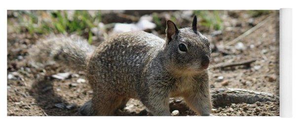 Squirrel Play  Yoga Mat