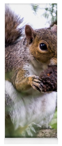 Squirrel With Pine Cone Yoga Mat