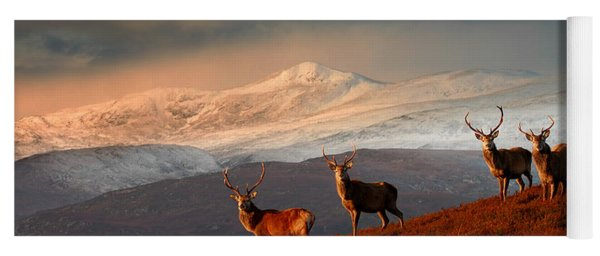 Stags At Strathglass Yoga Mat