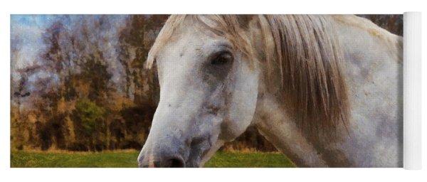 Study Of A Horse Yoga Mat