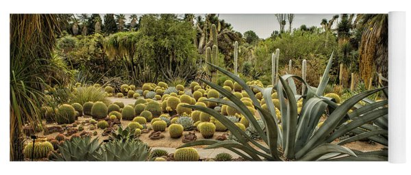 Succulents At Huntington Desert Garden No. 3 Yoga Mat