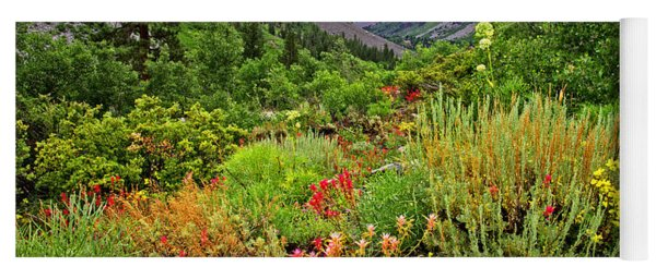 Summer Wildflowers In Lundy Canyon Yoga Mat