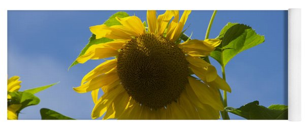 Sunflower 2 Yoga Mat