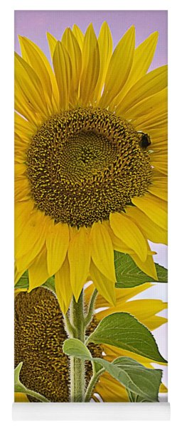 Sunflower With Colorful Evening Sky Yoga Mat