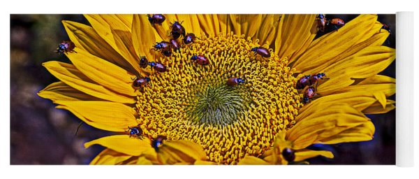 Sunflower With Ladybugs Yoga Mat