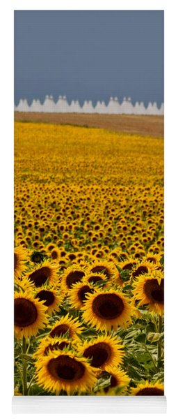 Sunflowers And Airports Yoga Mat