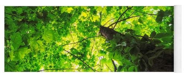 Sunlit Leaves Yoga Mat