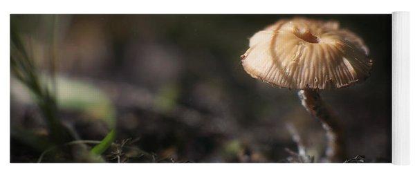 Sunlit Mushroom Yoga Mat