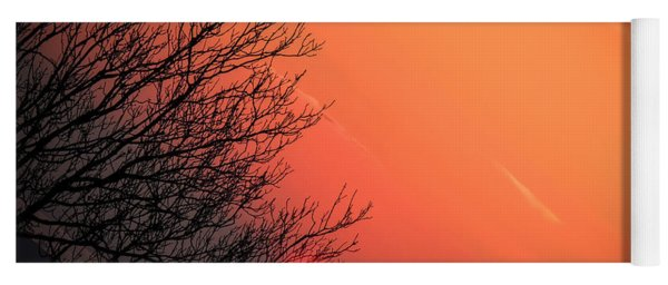 Sunrise And Hibernating Tree Yoga Mat