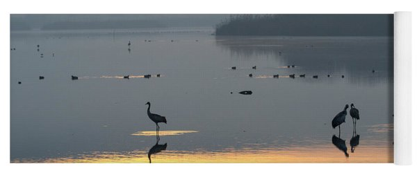 Sunrise Over The Hula Valley Israel 1 Yoga Mat