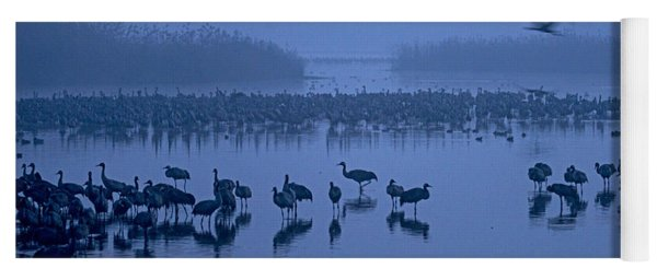 Sunrise Over The Hula Valley Israel 4 Yoga Mat